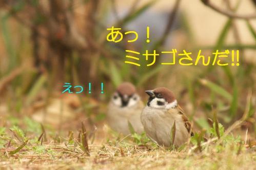030_20101202194153.jpg