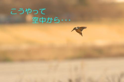 030_20110322002416.jpg