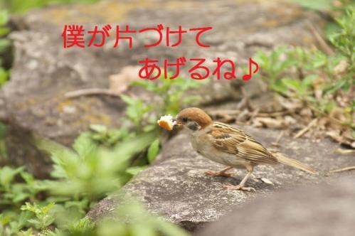 030_20110830214143.jpg