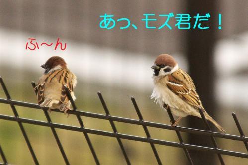 030_20111227205925.jpg