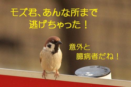 030_20120202222726.jpg