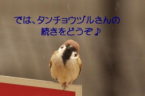 030_20120213215732.jpg