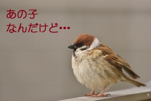 030_20120228213537.jpg