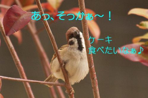 030_20120319224715.jpg