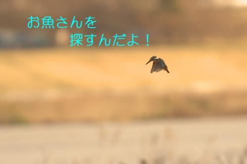 040_20110322002415.jpg