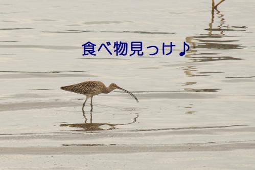 040_20110621204929.jpg