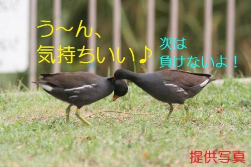 040_20110828211227.jpg
