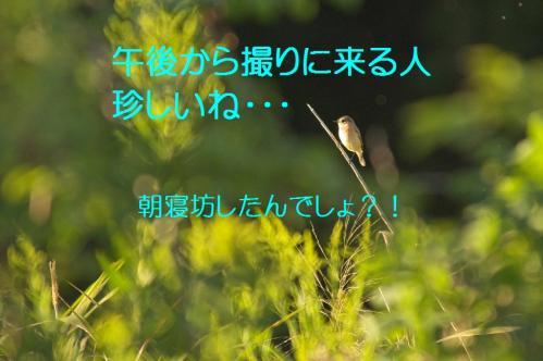 040_20111004221459.jpg