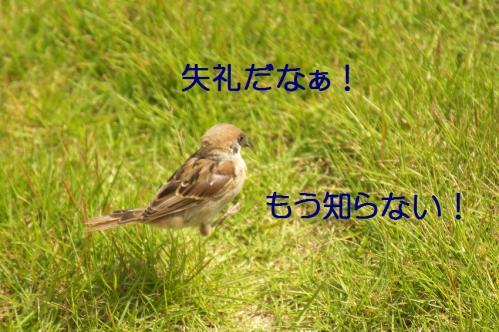 040_20111012232430.jpg
