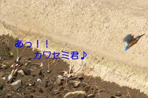 060_20110329231810.jpg