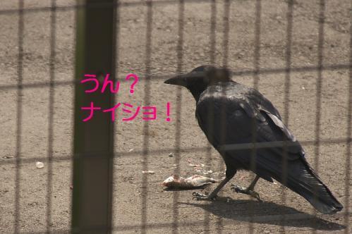 060_20111011210057.jpg