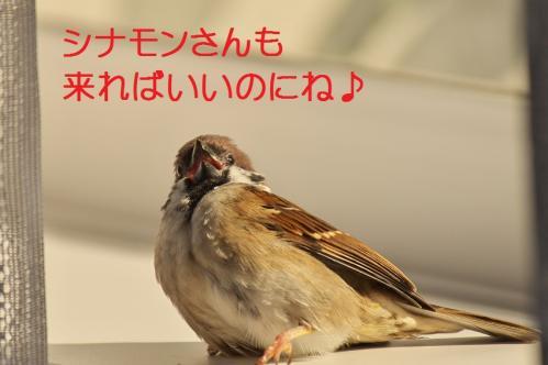 060_20111028231426.jpg