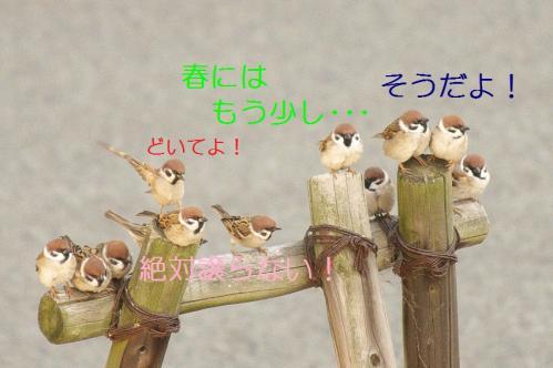 070_20110227234557.jpg
