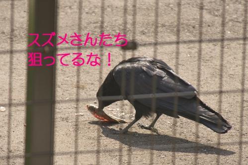 070_20111011210143.jpg