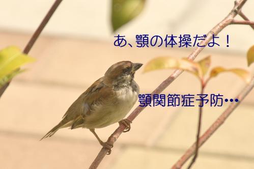 080_20111019222208.jpg