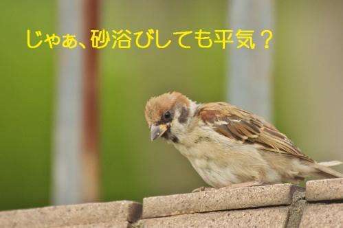 090_20111007221232.jpg
