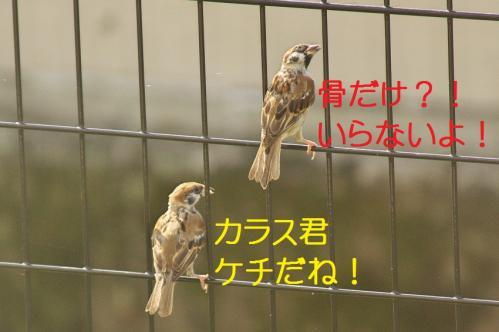 090_20111011210142.jpg