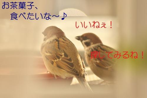 090_20111228225546.jpg