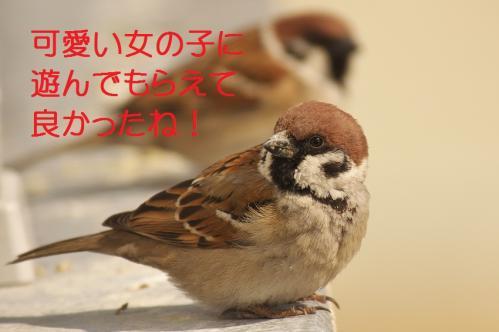 090_20120314230801.jpg
