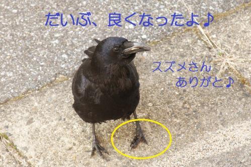 100_20110331222329.jpg