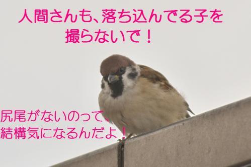 100_20111012232520.jpg