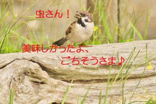 100_20111020220652.jpg