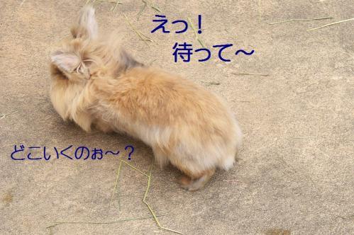 100_20120131202631.jpg