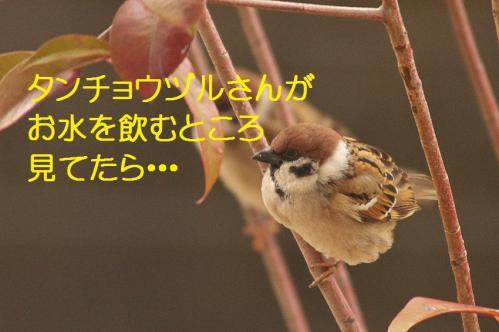 120_20120213220146.jpg