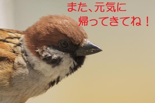 130_20120414204624.jpg