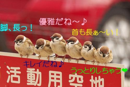 150_20120212190756.jpg