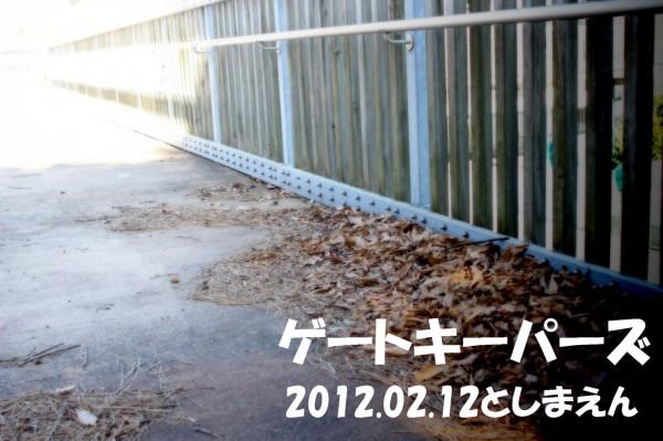 29_original.jpg