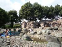 水場の公園