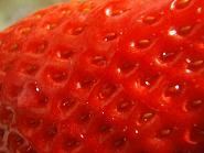 イチゴ表面