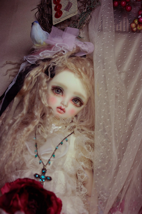 All you wanted to know about BJD's _MG_7599
