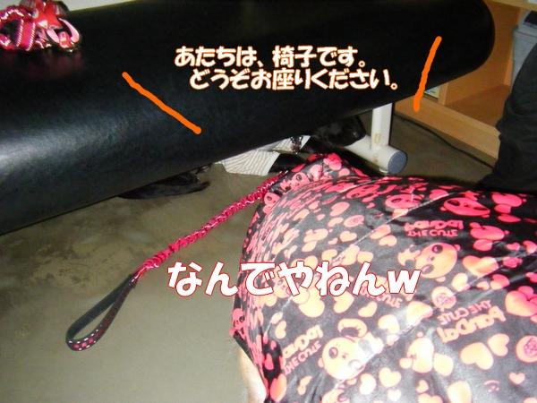 DSCF6005_20130210005333.jpg