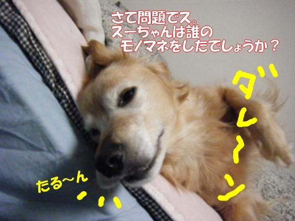 DSCF63301.jpg