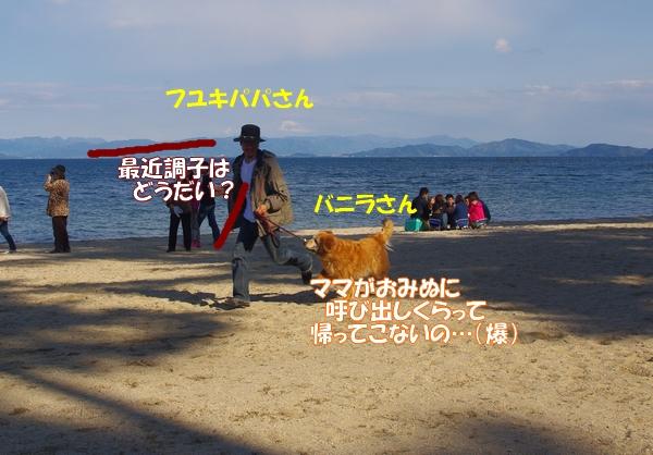 IMGP6648.jpg