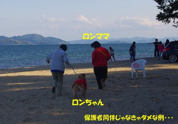 IMGP6667.jpg