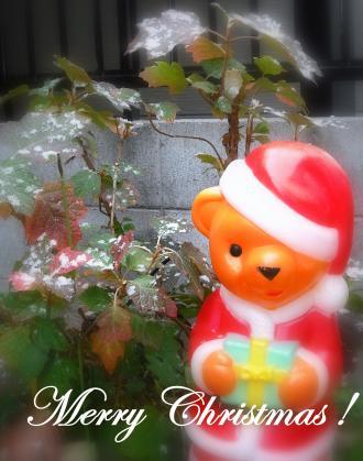 2010christmas.jpg