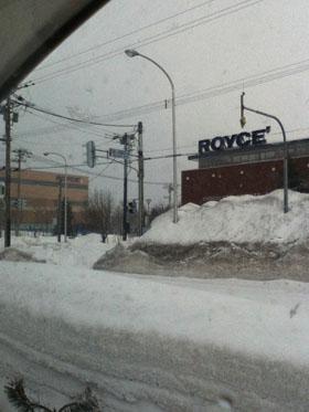 雪の中のロイズ