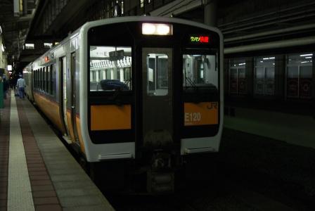 DSC01131.jpg
