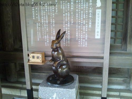DSC_0065-.jpg