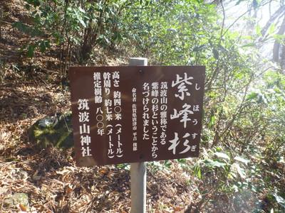 131129高尾筑波山29