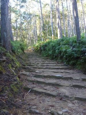 131206熊野古道小辺路26