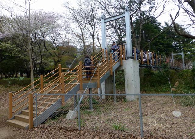 砧公園の吊り橋1