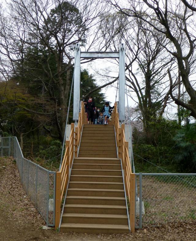 砧公園の吊り橋3