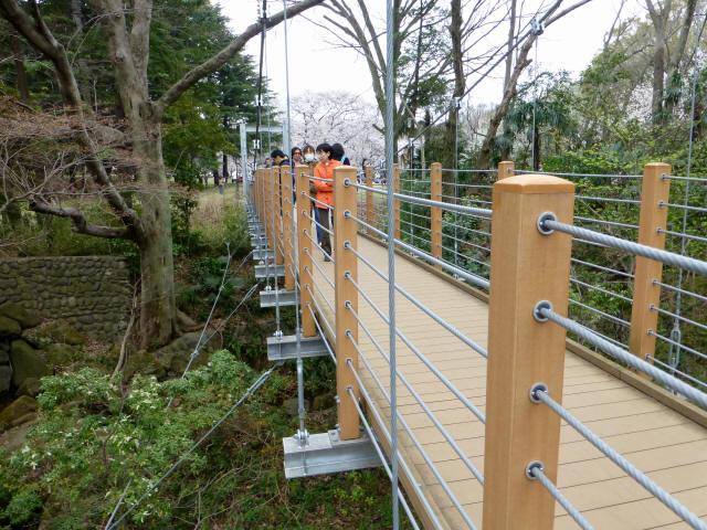 砧公園の吊り橋4