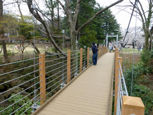 砧公園の吊り橋5