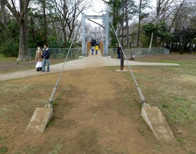 砧公園の吊り橋7