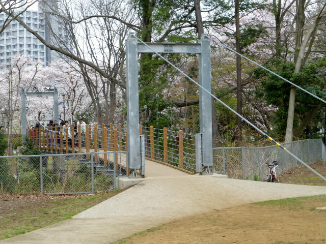 砧公園の吊り橋8